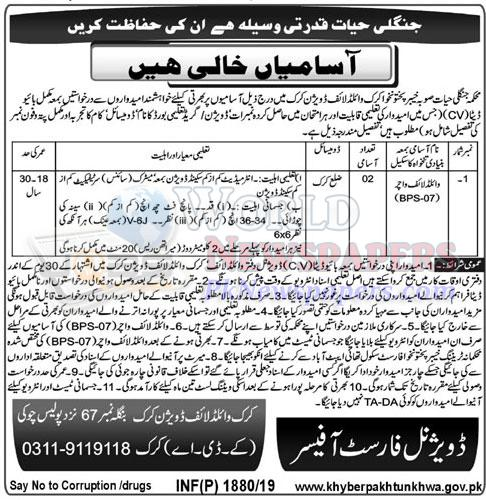 Jobs in Wildlife Division Karak